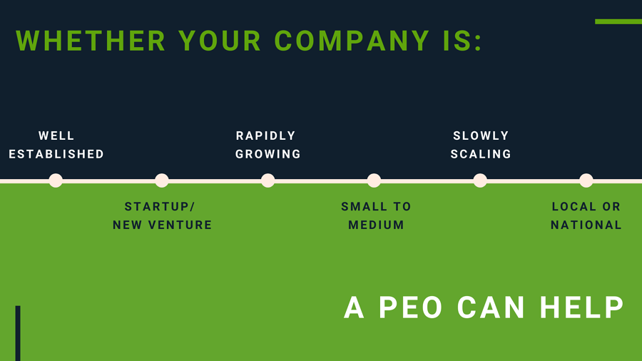 What is a PEO - a peo can help your business